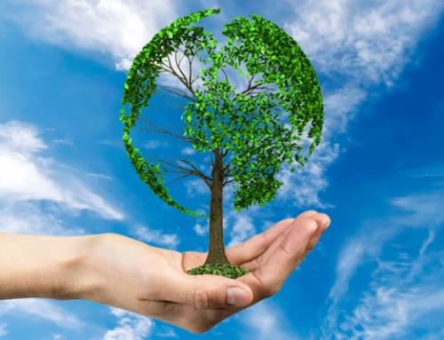 De Gabriël Duurzame Beleggingsstrategie